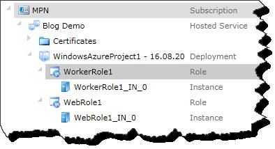 Windows Azure Portal - Role Selected